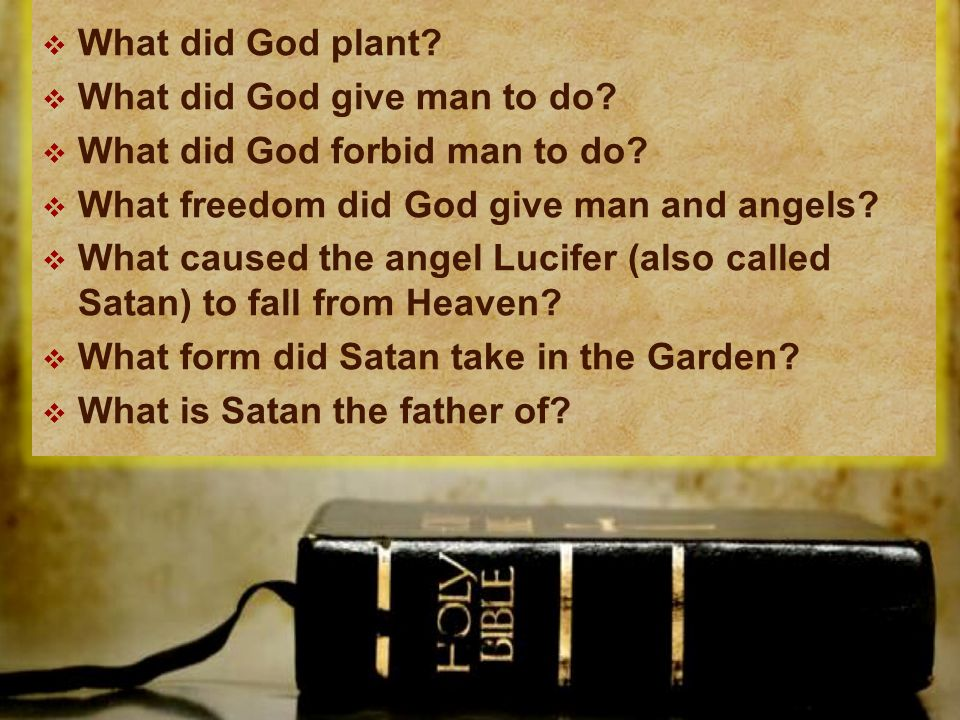 What did God plant. What did God give man to do.