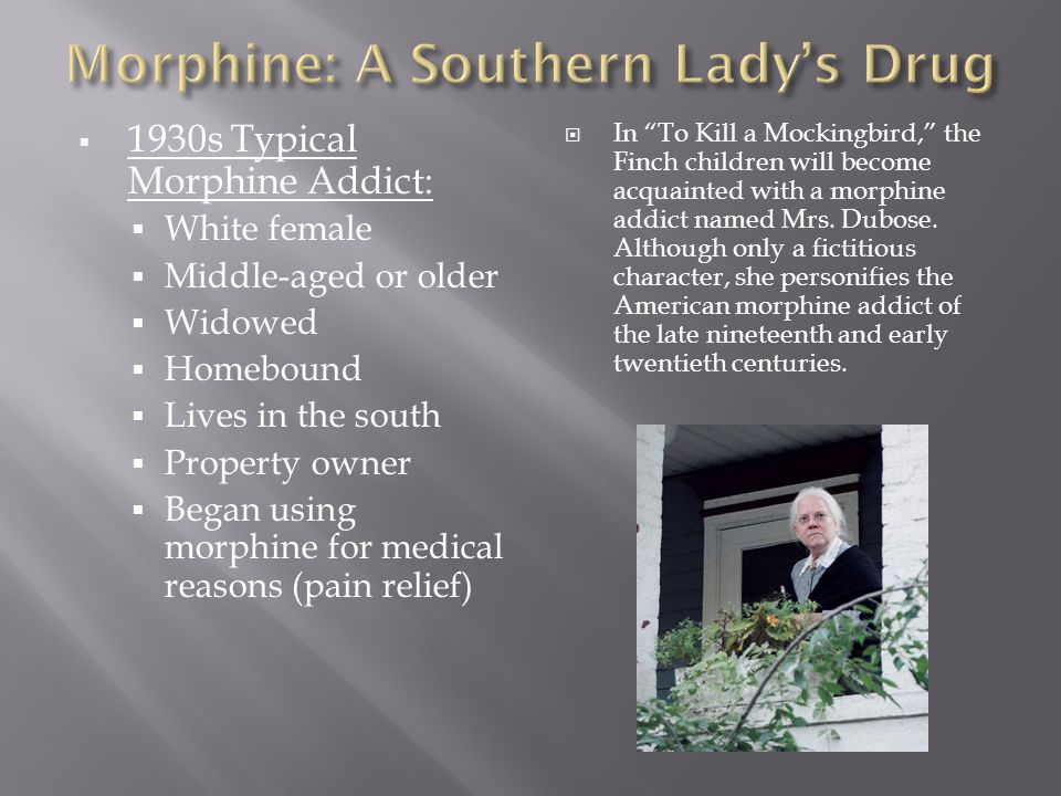  1930s Typical Morphine Addict:  White female  Middle-aged or older  Widowed  Homebound  Lives in the south  Property owner  Began using morphine for medical reasons (pain relief)  In To Kill a Mockingbird, the Finch children will become acquainted with a morphine addict named Mrs.