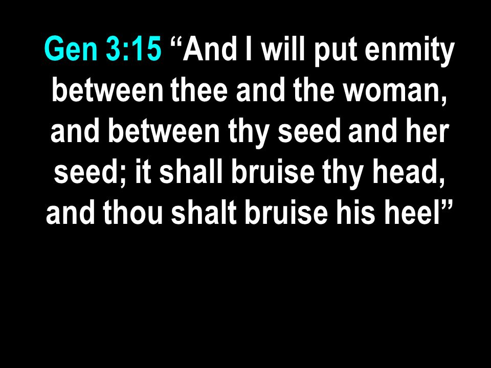 Gen 3:15 And I will put enmity between thee and the woman, and between thy seed and her seed; it shall bruise thy head, and thou shalt bruise his heel