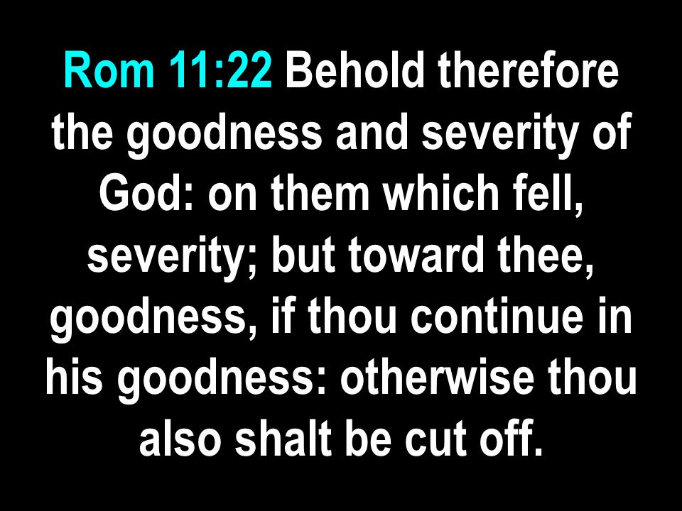 Rom 11:22 Behold therefore the goodness and severity of God: on them which fell, severity; but toward thee, goodness, if thou continue in his goodness: otherwise thou also shalt be cut off.