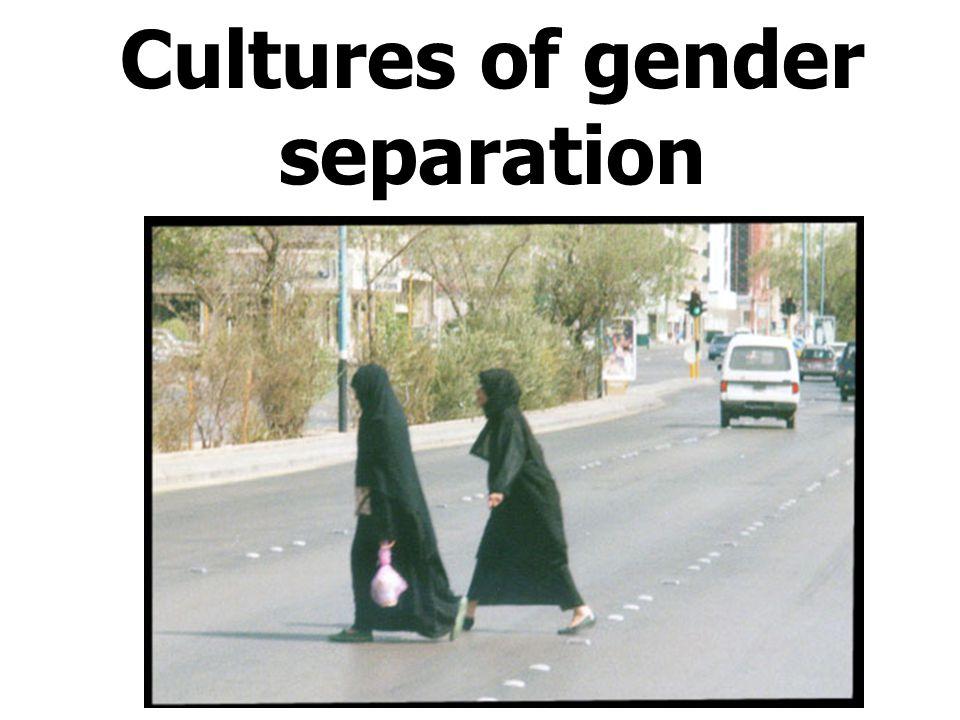 Cultures of gender separation