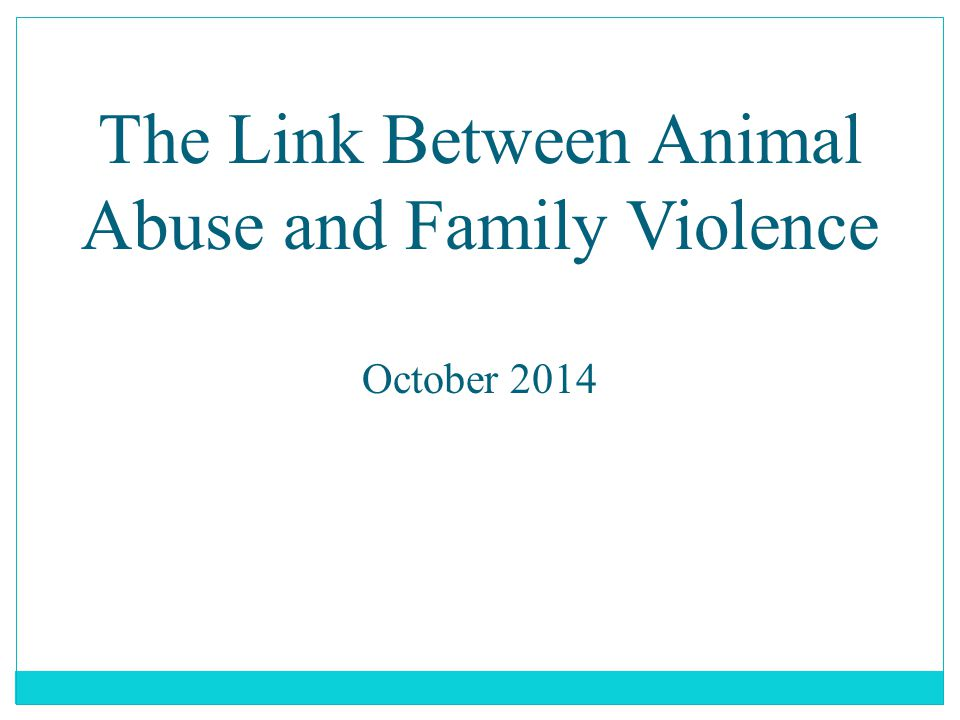 The Link Between Animal Abuse and Family Violence Faculty: Michael J. Devereaux Esq.