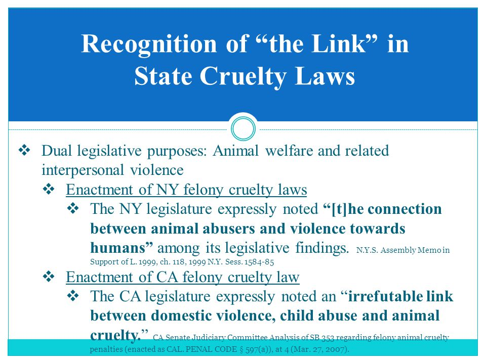 Recognition of the Link in State Cruelty Laws  Dual legislative purposes: Animal welfare and related interpersonal violence  Enactment of NY felony cruelty laws  The NY legislature expressly noted [t]he connection between animal abusers and violence towards humans among its legislative findings.