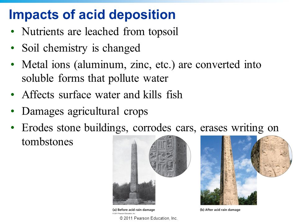© 2011 Pearson Education, Inc. Impacts of acid deposition Nutrients are leached from topsoil Soil chemistry is changed Metal ions (aluminum, zinc, etc