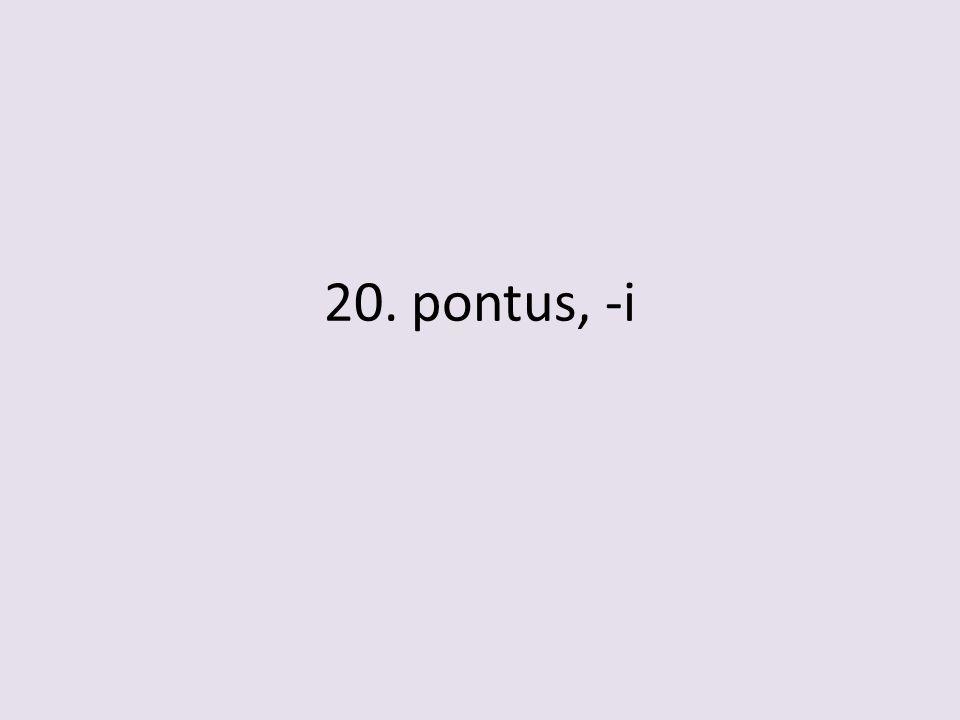 20. pontus, -i