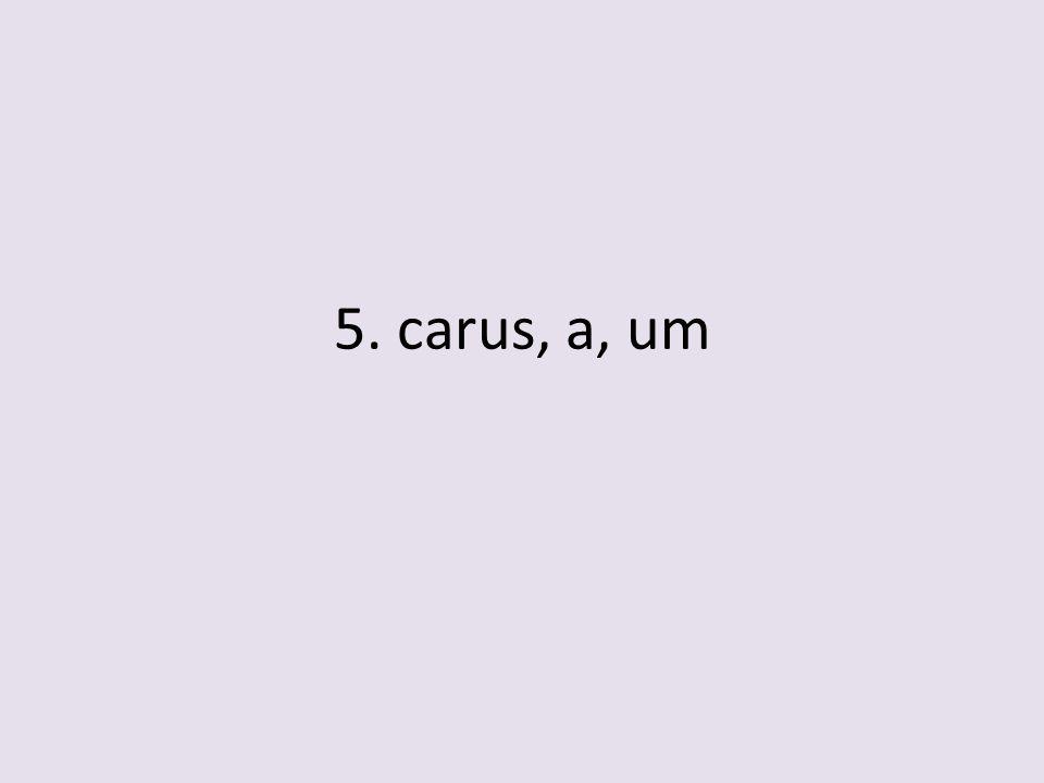 5. carus, a, um