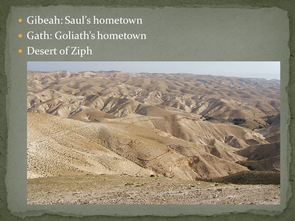 Gibeah: Saul's hometown Gath: Goliath's hometown Desert of Ziph