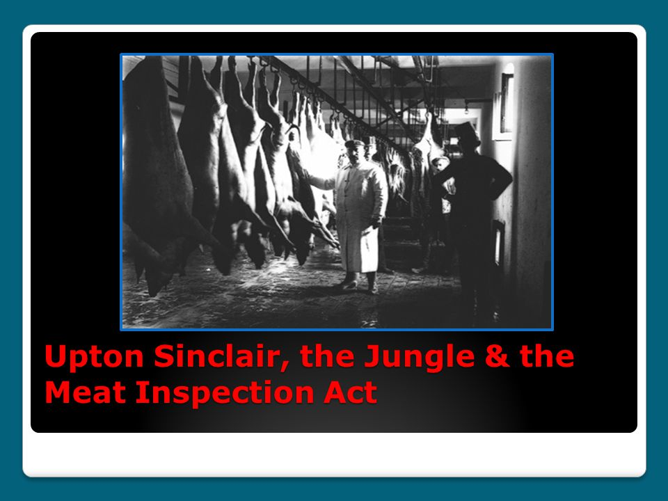 Upton Sinclair, the Jungle & the Meat Inspection Act