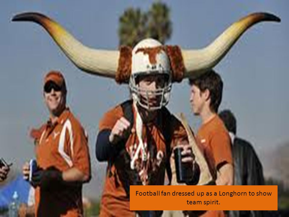 Football fan dressed up as a Longhorn to show team spirit.