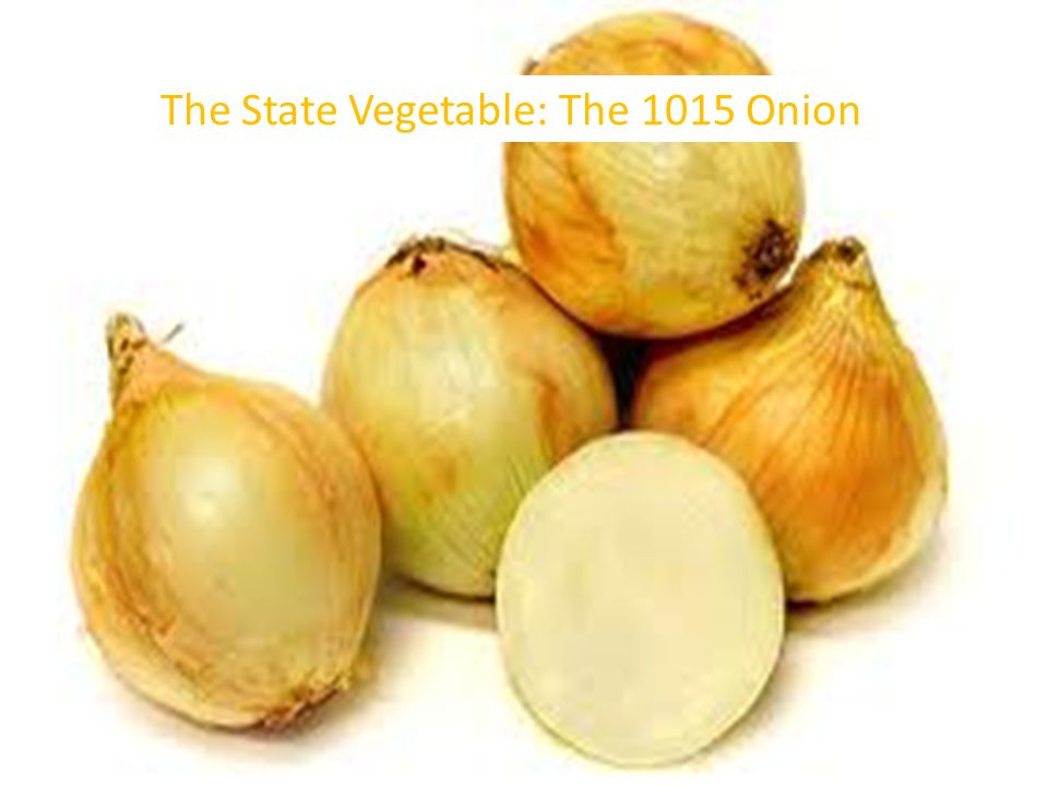 The State Vegetable: The 1015 Onion