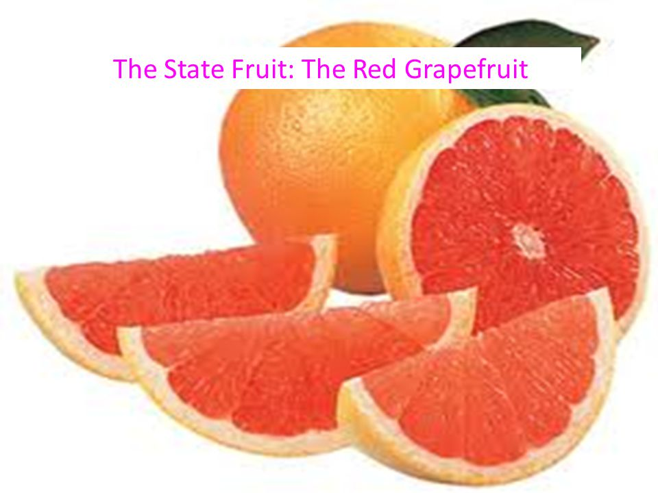 The State Fruit: The Red Grapefruit