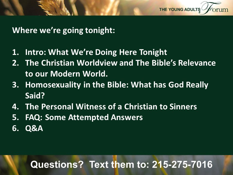 The Main Texts for thinking about the issue: (The Whole Bible.) Genesis 1-3: Creation, Adam, and Eve Genesis 19: The City of Sodom Leviticus 18-22: The Holiness Code in the Law 1 Samuel 18: David and Jonathan The Gospels: Jesus' teachings Paul's writings: Romans 1 & more…