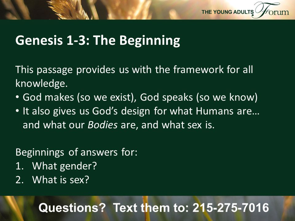 Genesis 1-3: The Beginning This passage provides us with the framework for all knowledge.