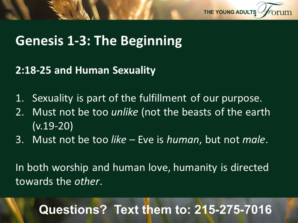Genesis 1-3: The Beginning 2:18-25 and Human Sexuality 1.Sexuality is part of the fulfillment of our purpose.