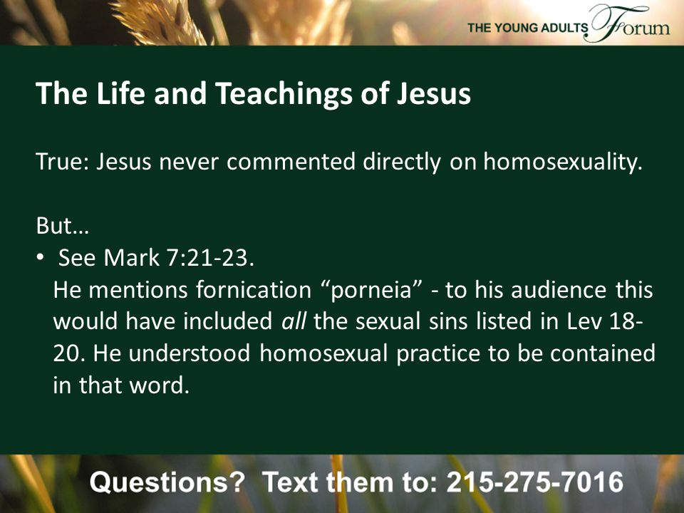 The Life and Teachings of Jesus True: Jesus never commented directly on homosexuality.