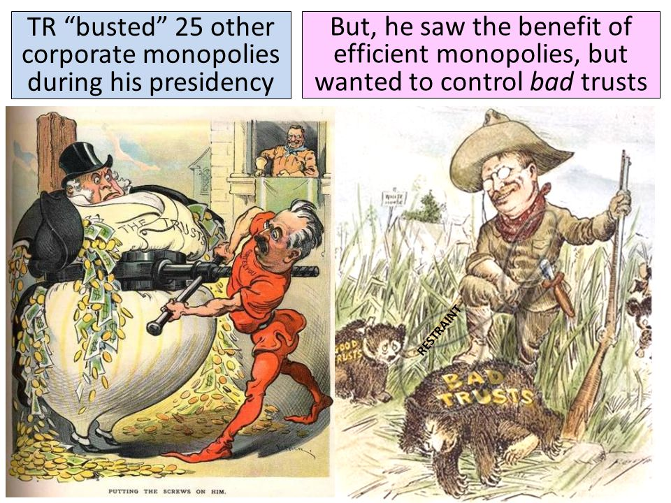 """Roosevelt was the first president to regulate big business and break up corporate monopolies He became known as a """"trustbuster"""" when he used the Sherm"""