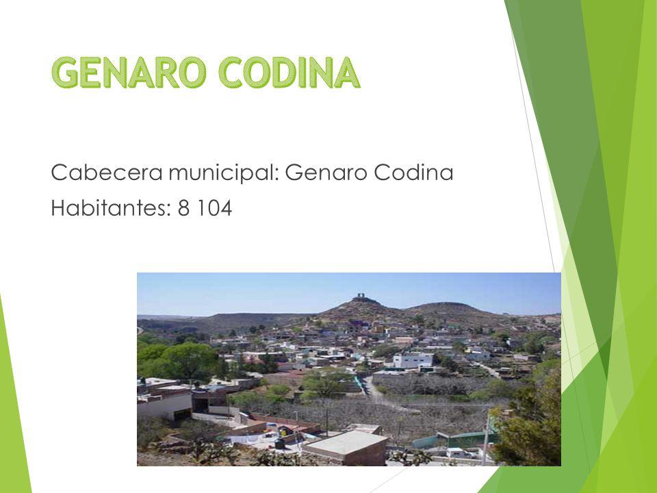 Cabecera municipal: Genaro Codina Habitantes: 8 104