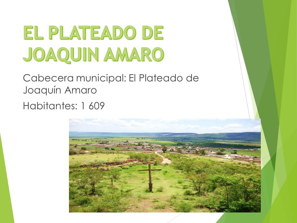 Cabecera municipal: El Plateado de Joaquín Amaro Habitantes: 1 609