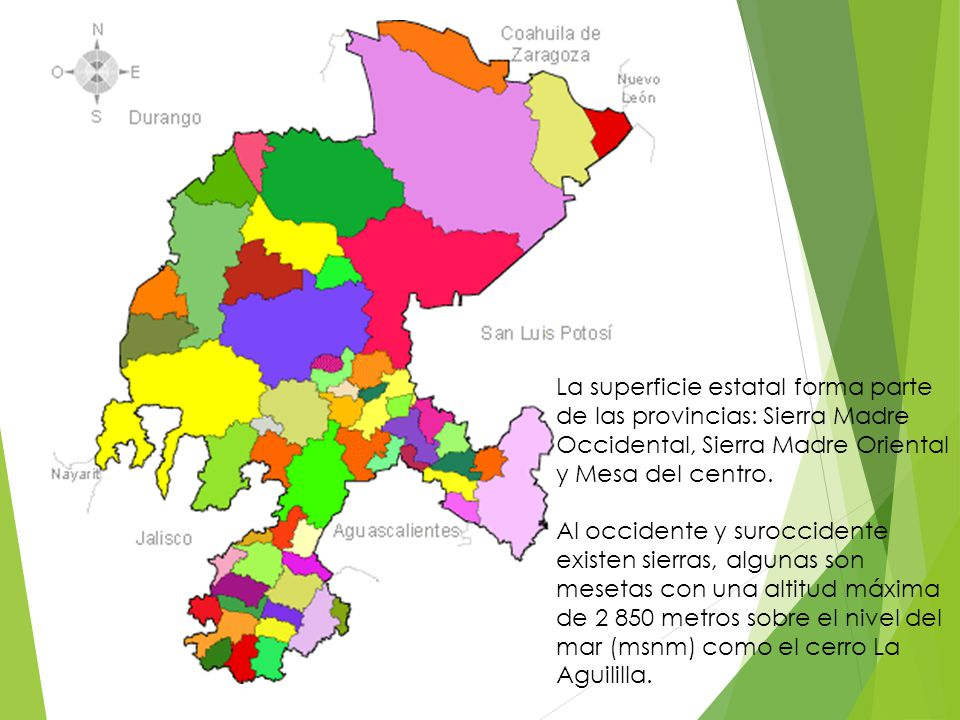 La superficie estatal forma parte de las provincias: Sierra Madre Occidental, Sierra Madre Oriental y Mesa del centro.