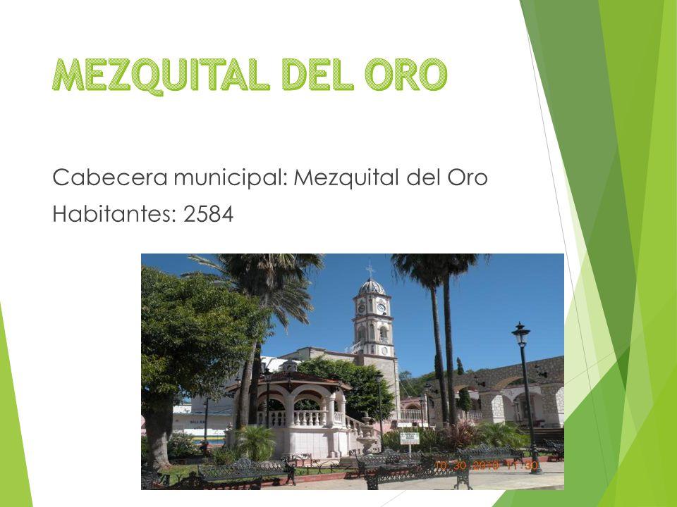 Cabecera municipal: Mezquital del Oro Habitantes: 2584