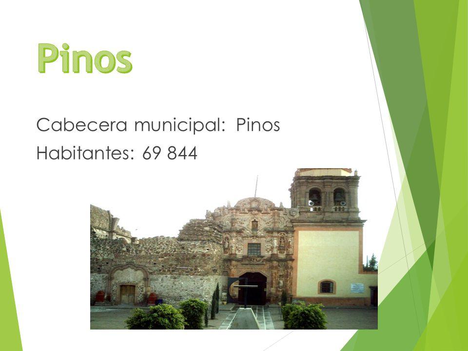 Cabecera municipal: Pinos Habitantes: 69 844