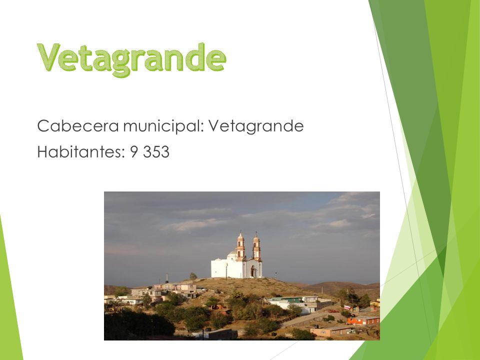 Cabecera municipal: Vetagrande Habitantes: 9 353