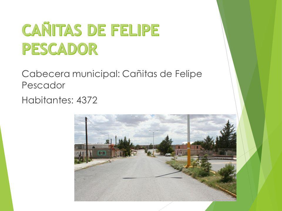Cabecera municipal: Cañitas de Felipe Pescador Habitantes: 4372