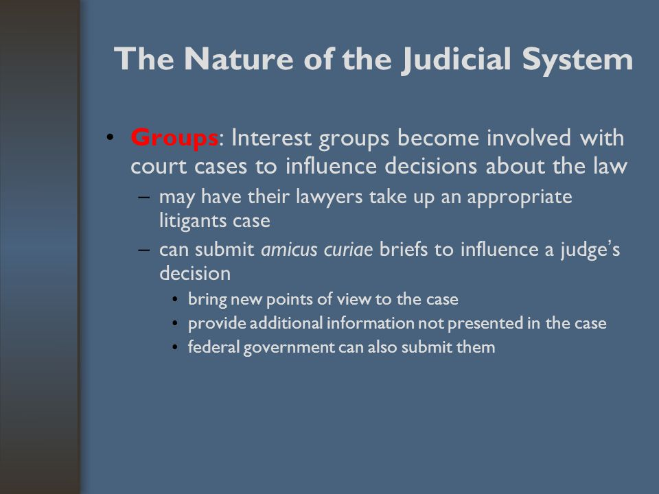 The Nature of the Judicial System Groups: Interest groups become involved with court cases to influence decisions about the law –may have their lawyer