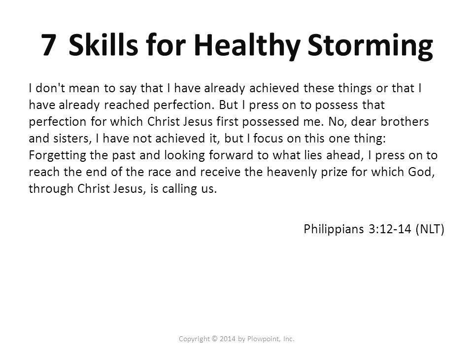 Copyright © 2014 by Plowpoint, Inc.7 Skills for Healthy Storming 1.Seek first to understand 2.