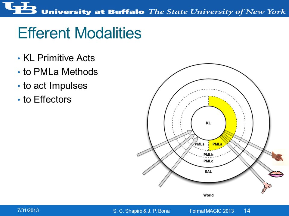 Efferent Modalities KL Primitive Acts to PMLa Methods to act Impulses to Effectors 7/31/2013 S.