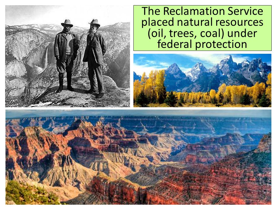 Theodore Roosevelt began the first national environmental conservation program The government protected 195 million acres of land as national parks or forests