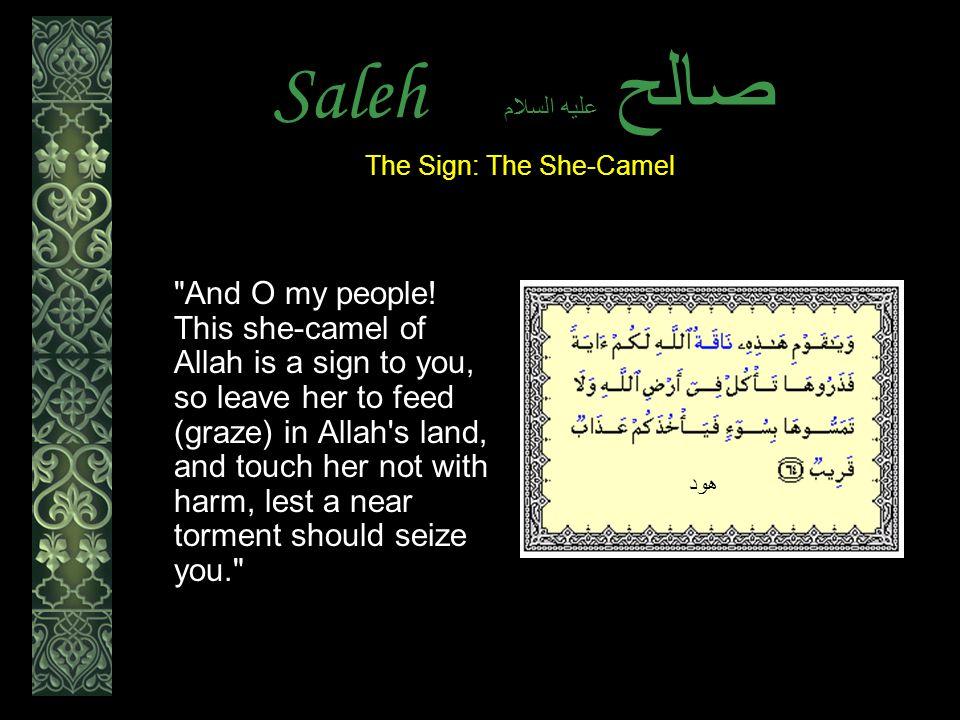 Saleh عليه السلام صالح And O my people.