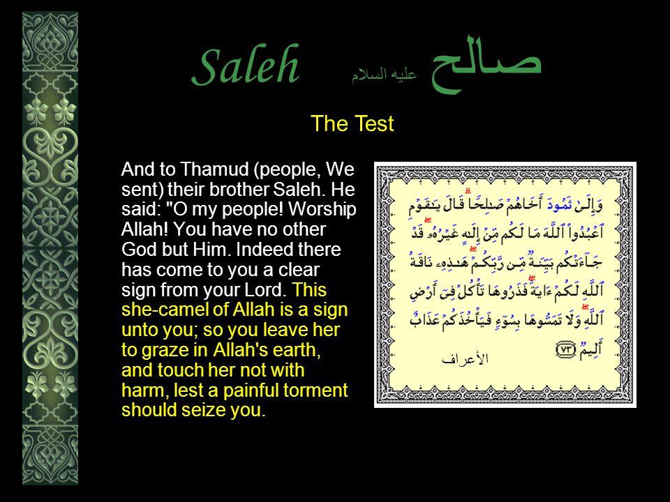 Saleh عليه السلام صالح And to Thamud (people, We sent) their brother Saleh.