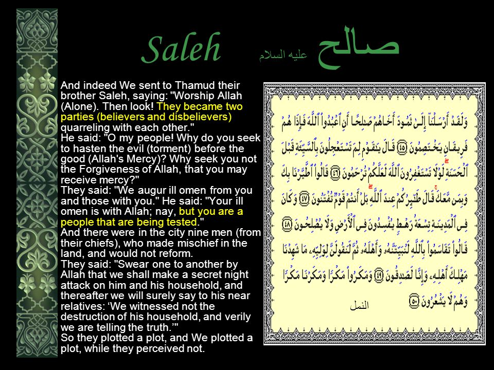 Saleh عليه السلام صالح And indeed We sent to Thamud their brother Saleh, saying: Worship Allah (Alone).