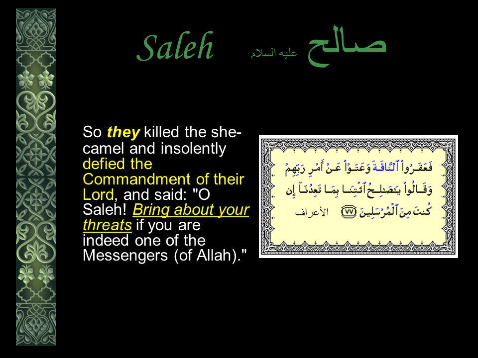Saleh عليه السلام صالح So they killed the she- camel and insolently defied the Commandment of their Lord, and said: O Saleh.