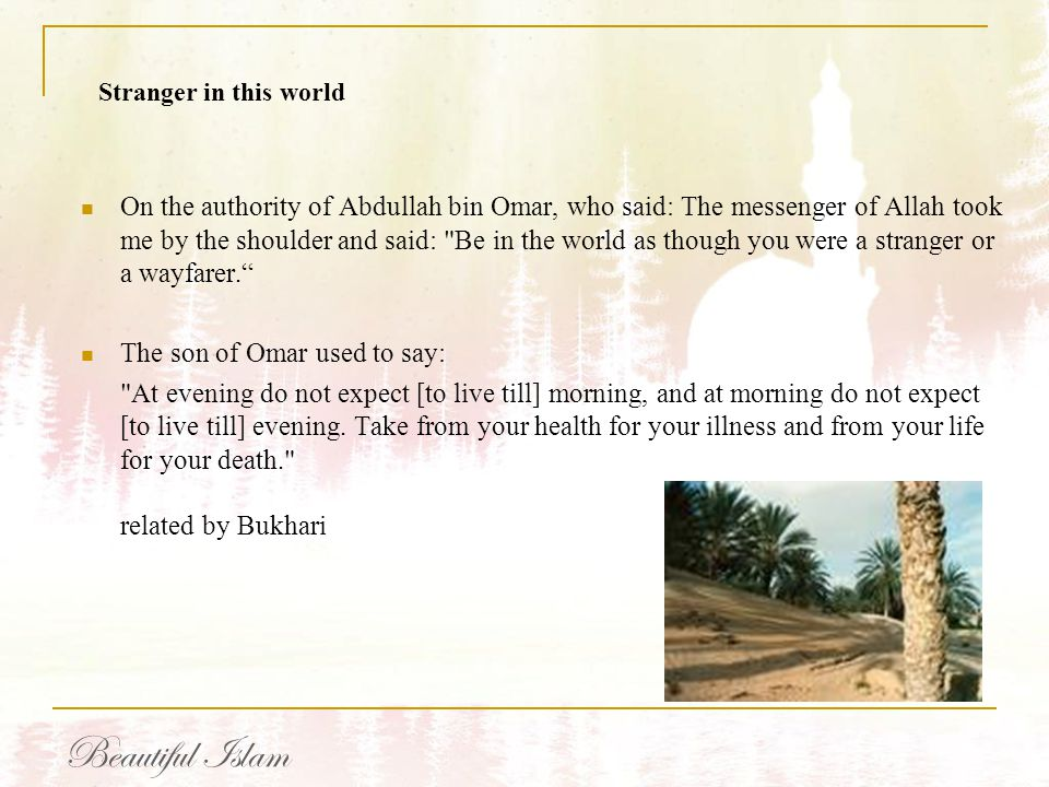 On the authority of Abdullah bin Omar, who said: The messenger of Allah took me by the shoulder and said: