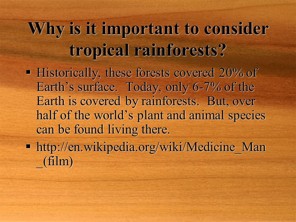Why is it important to consider tropical rainforests.
