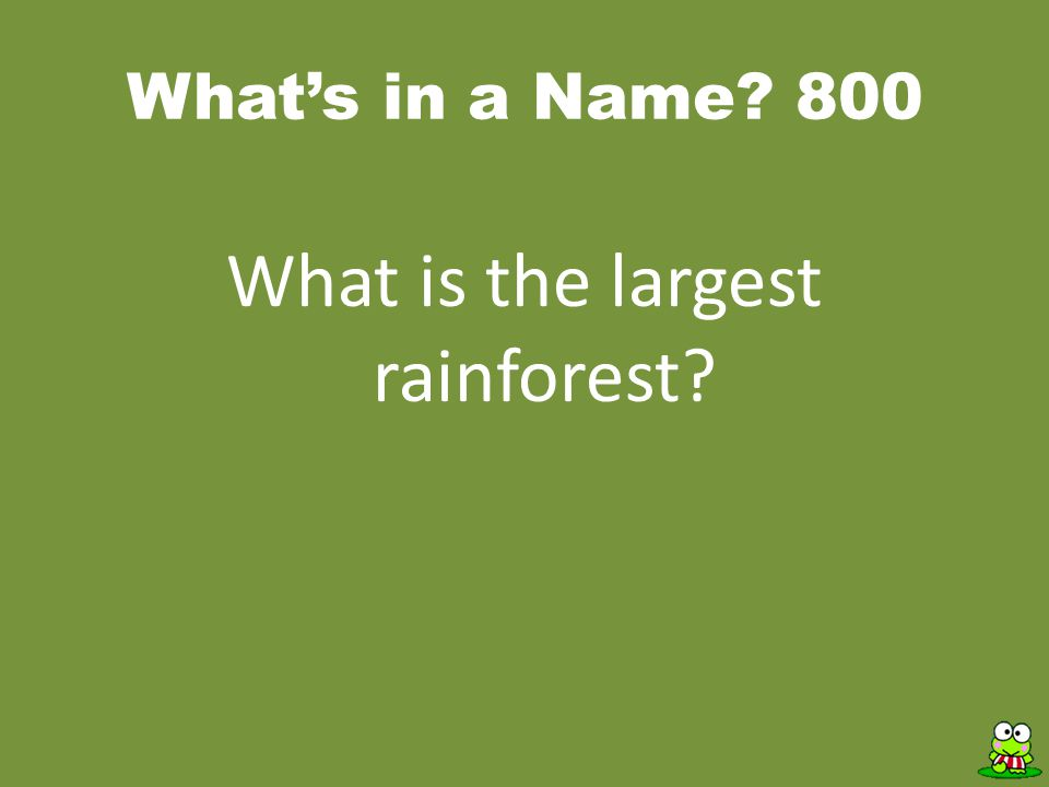 What's in a Name? 800 What is the largest rainforest?