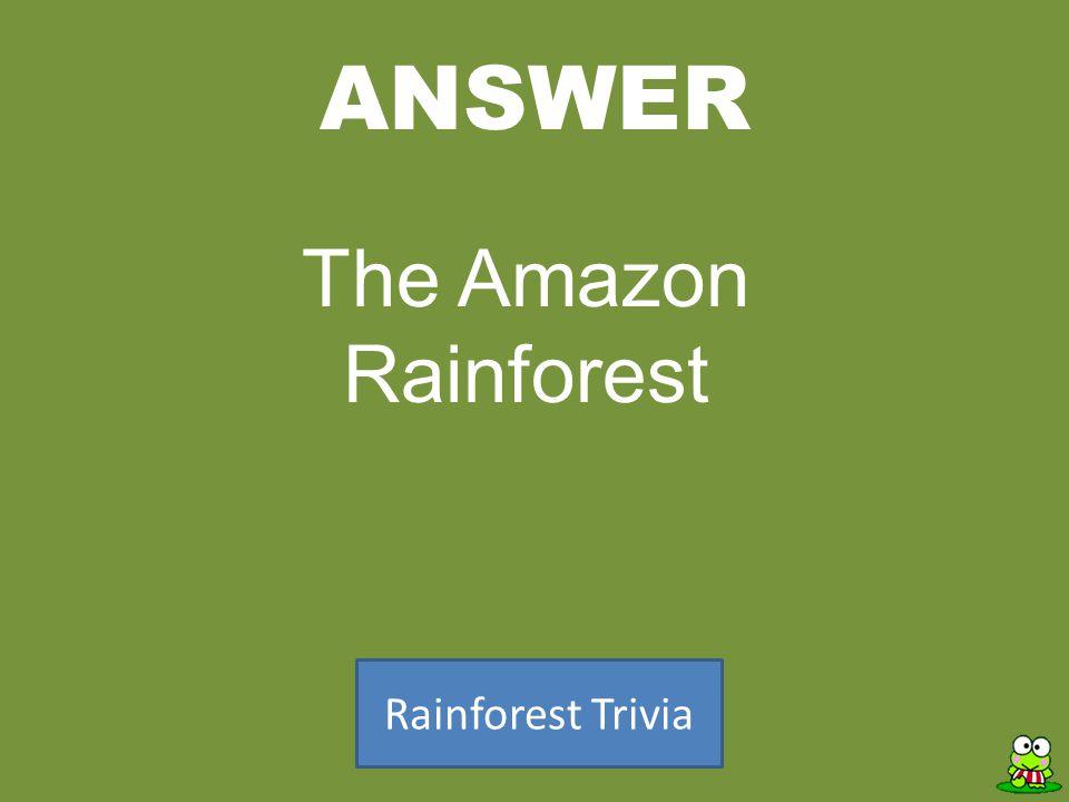 ANSWER Rainforest Trivia The Amazon Rainforest