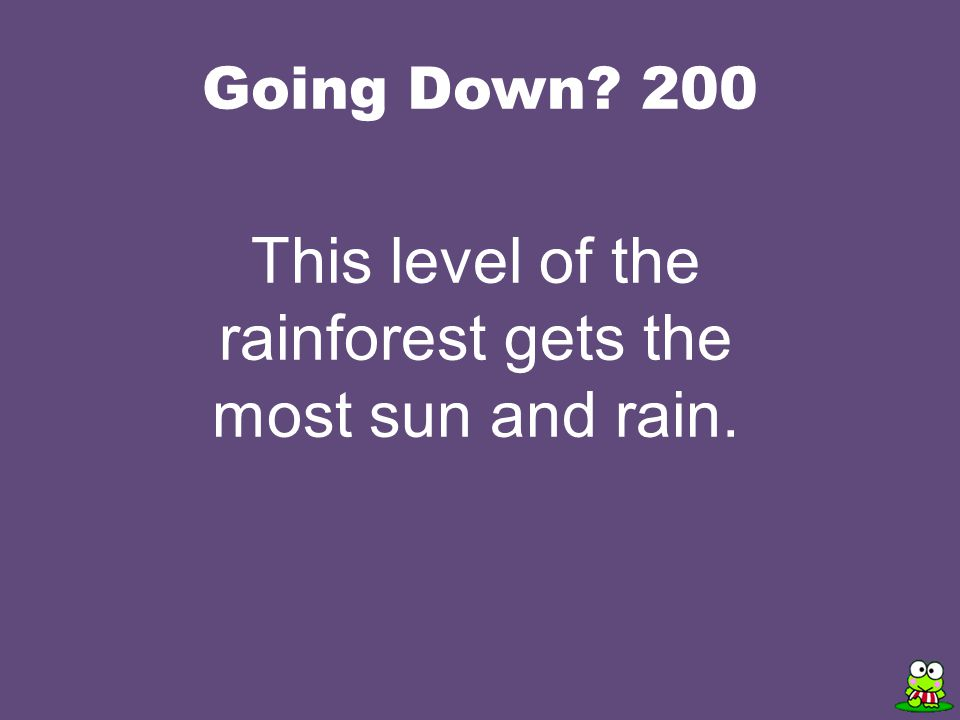Going Down 200 This level of the rainforest gets the most sun and rain.