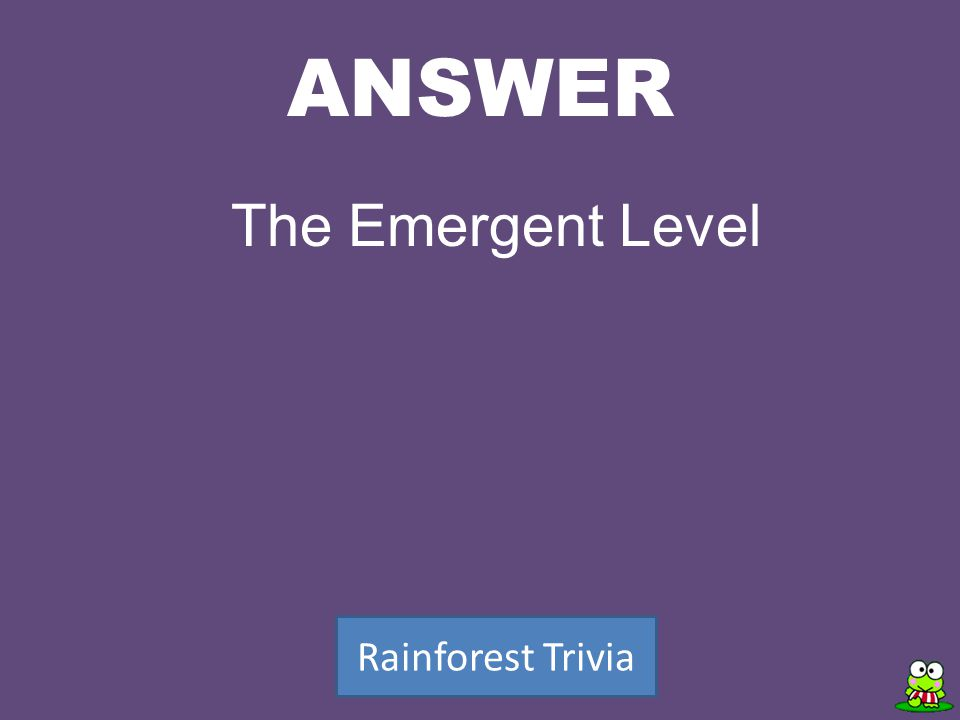 ANSWER Rainforest Trivia The Emergent Level