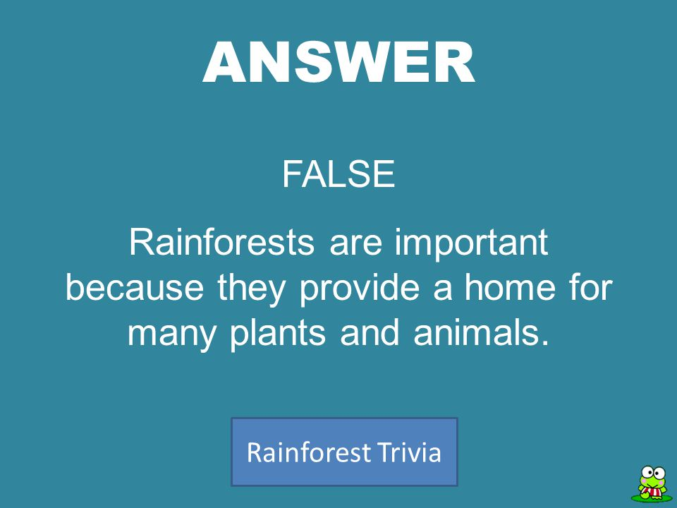 ANSWER Rainforest Trivia FALSE Rainforests are important because they provide a home for many plants and animals.