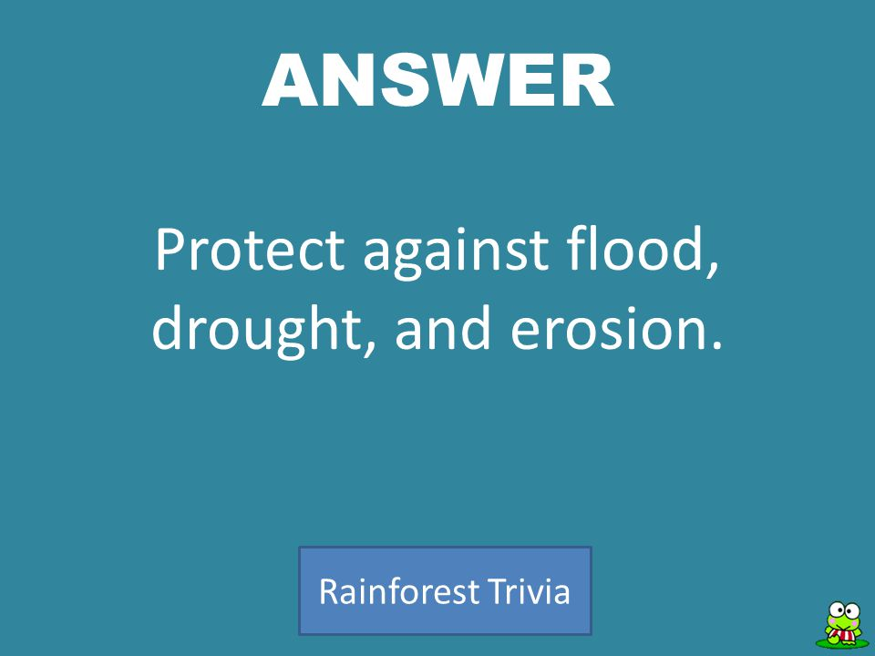 ANSWER Rainforest Trivia Protect against flood, drought, and erosion.