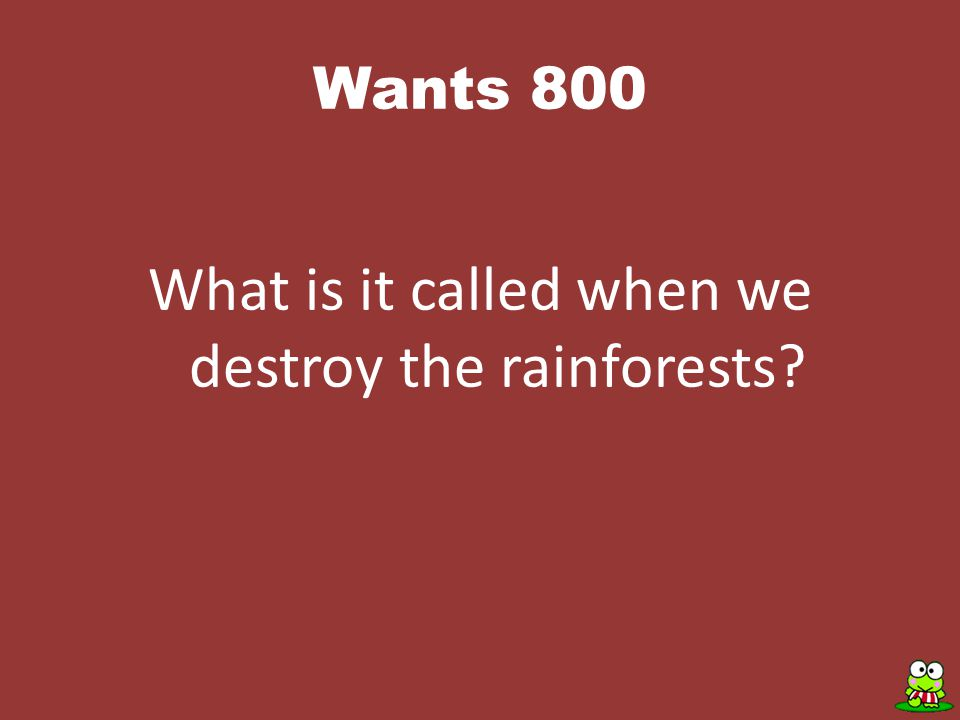 Wants 800 What is it called when we destroy the rainforests