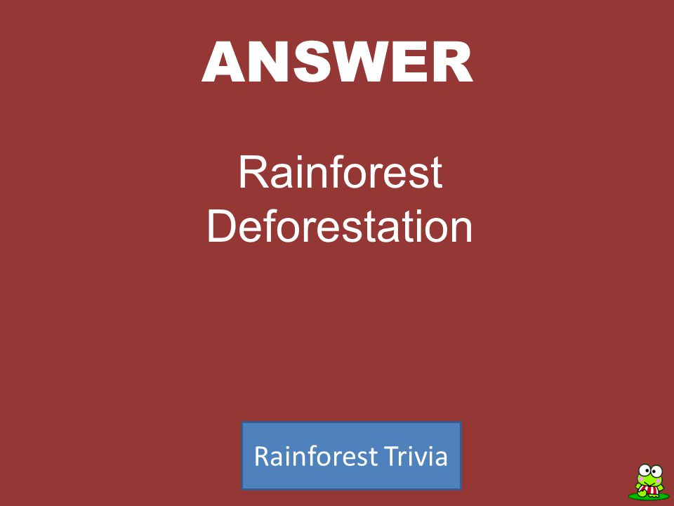 ANSWER Rainforest Trivia Rainforest Deforestation