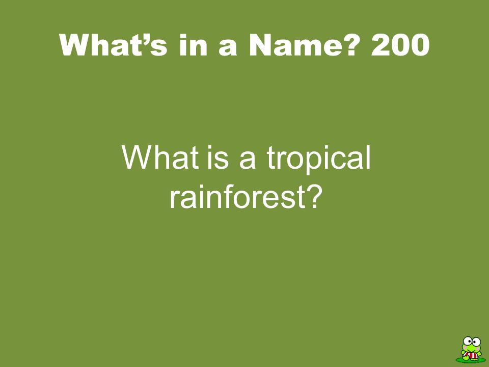 ANSWER Rainforest Trivia Rainforests help stabilize the world's CLIMATE.