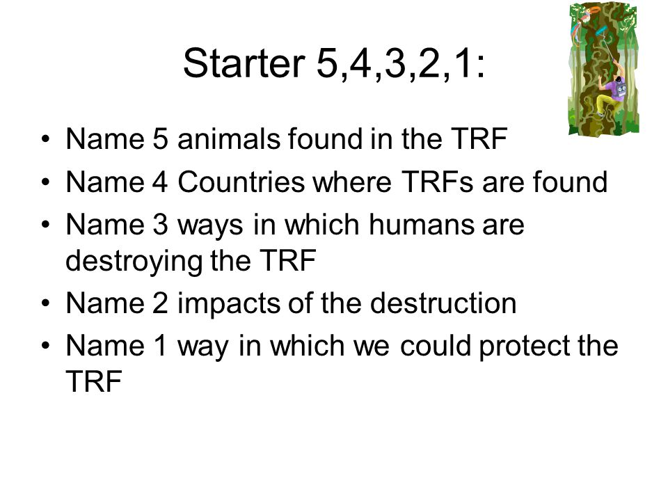 To understand why we should save the tropical rainforest and evaluate ways in which we can do this.