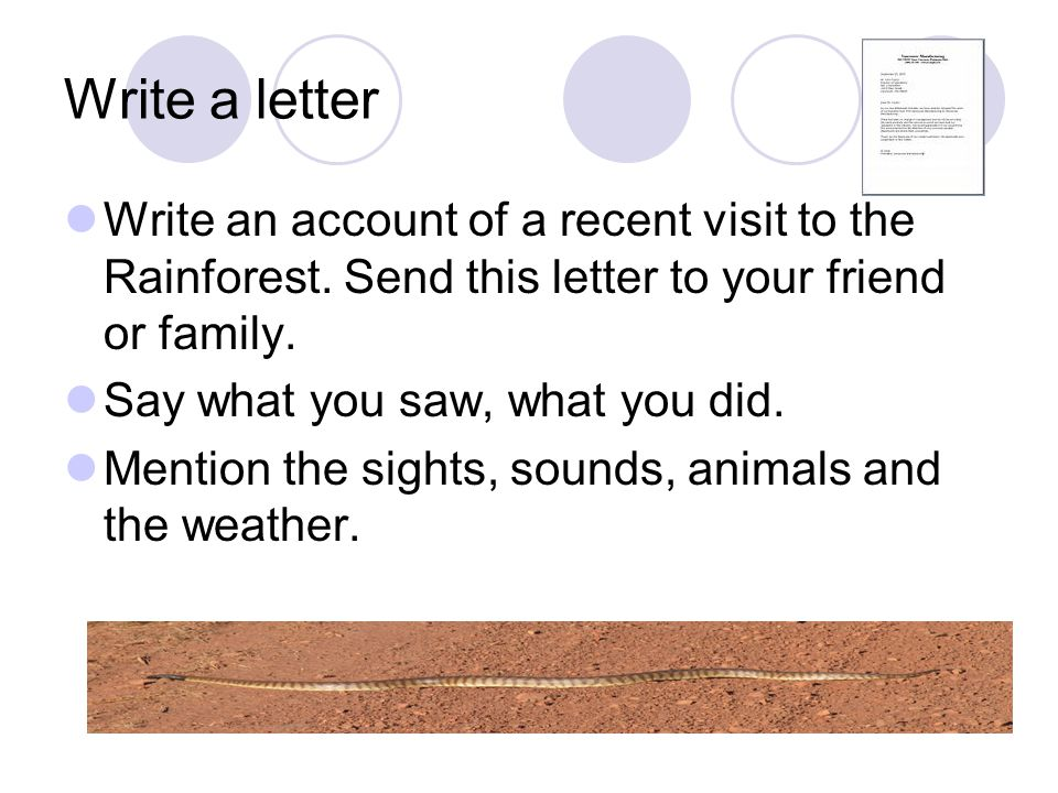 Write a letter Write an account of a recent visit to the Rainforest. Send this letter to your friend or family. Say what you saw, what you did. Mentio