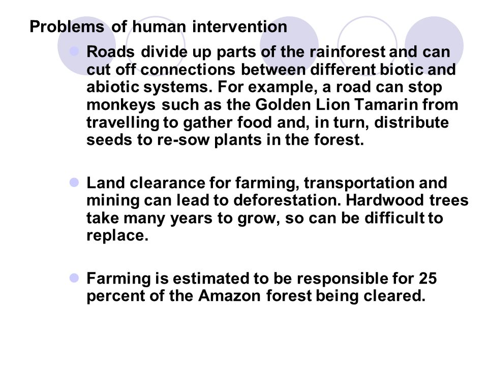 Problems of human intervention Roads divide up parts of the rainforest and can cut off connections between different biotic and abiotic systems. For e