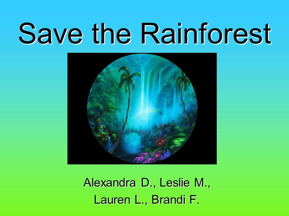 Sources www.rainforestweb.com www.rain-tree.com www.rainforestportal.com www.savetherainforest.org